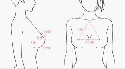 丰胸手术讲究完美比例