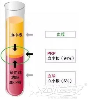 prp在血液中的所占的百分比