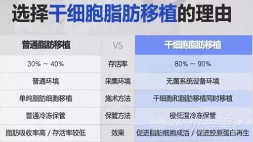 韩国干细胞脂肪和普通脂肪移植区别