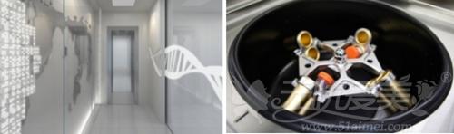 韩国干细胞脂肪培养环境