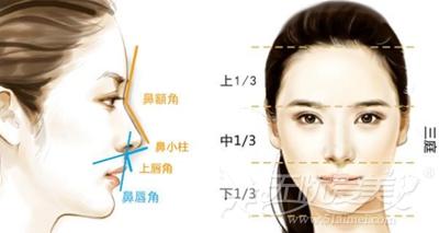 韩国隆鼻手术遵循的三庭五眼美学标准