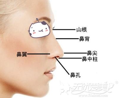 韩国隆鼻手术可以改善鼻部部位