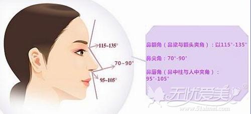 自体软骨隆鼻遵循的美学标准