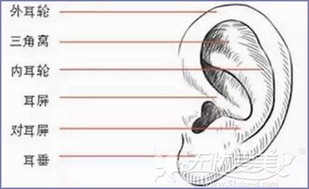 先天性小耳畸形会影响听力