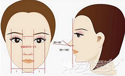 韩国自体肋骨隆鼻鼻部美学标准