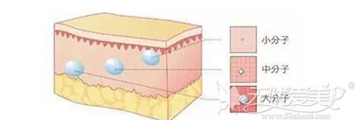 玻尿酸和水光针的交联程度不同