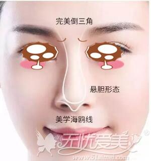 亚洲人美鼻标准
