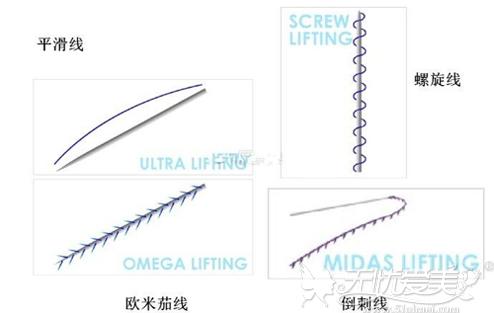 线雕用到的各种不同的蛋白线