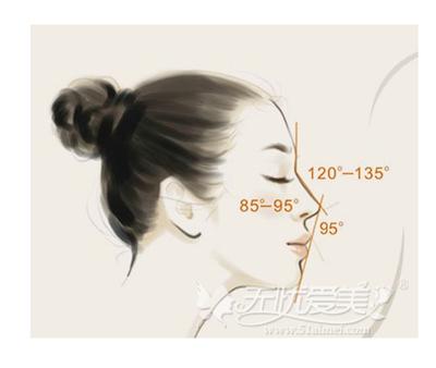 隆鼻的美学标准