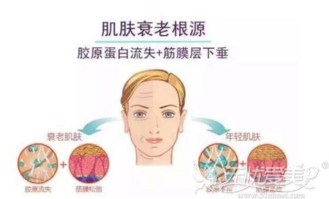 皮肤衰老的原因