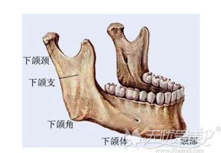 下颌角整形手术