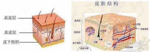 皮肤衰老的原因及特征