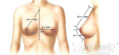 好看的胸部标准