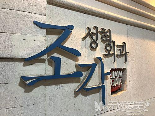 韩国雕刻整形美容外科