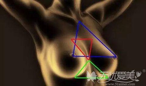 隆胸手术遵从的比例设计