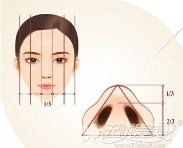 好看的鼻翼和鼻孔的标准