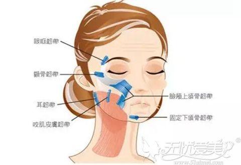 口角囊袋形成的原因