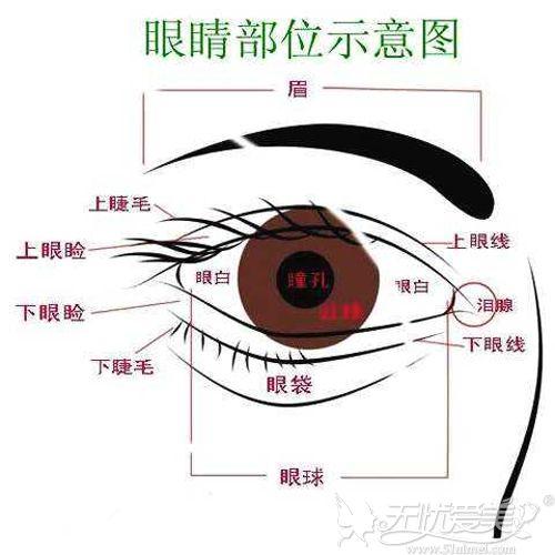 眼综合的优势是可以解决多种问题