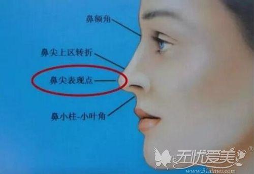 鼻尖的位置
