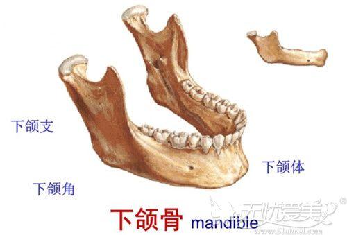 骨骼型发腮可通过下颌角手术解决