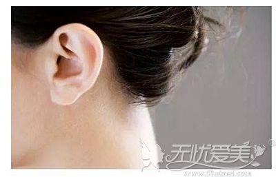 植眉是选择的毛囊的提取部位