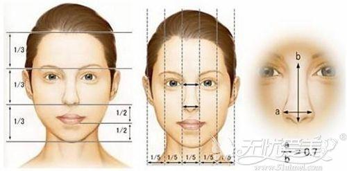面部整形的美学标准